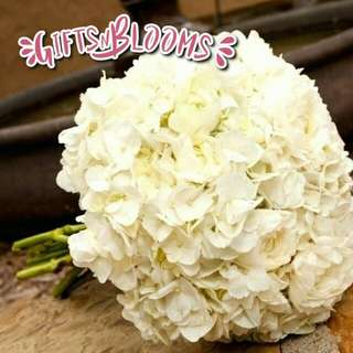 Beautiful Fresh Flower Surprise for Special One Bouquet V44 - JOFPN