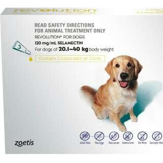 (Authentic) Revolution Dog 20.1kg to 40.1kg