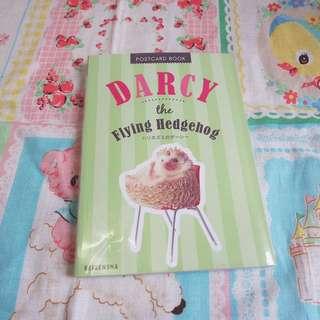 日本刺蝟Darcy the Hedgehog postcard book明信卡