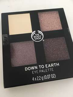 Body shop Down to Earth eye palette