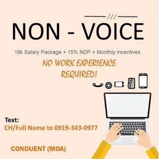 Non-Voice / No experience required 19k