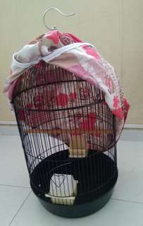 A black 🐦 cage with a cloth cover for clearance sale.
