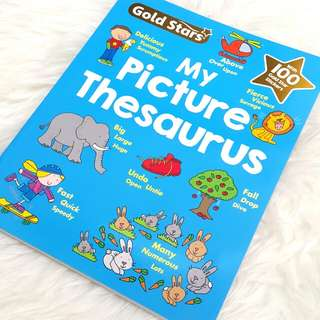 Baby book - my picturr thesaurus
