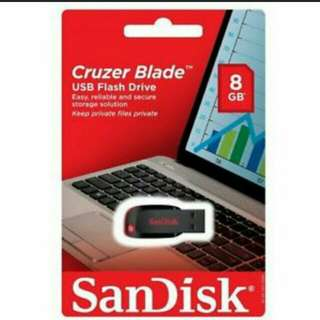 SanDisk USB 8gb Flash Drive