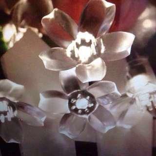 Cherry Blossom LED string Lights