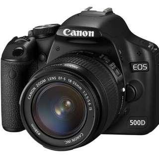 Canon 500D + Lenses