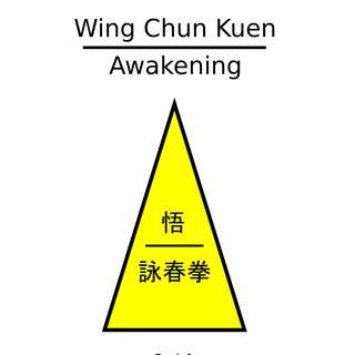 Wing Chun Books That Disclose and Fix the Scientific Errors