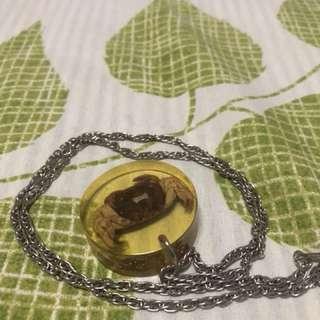 🚚 螃蟹標本項鍊飾品