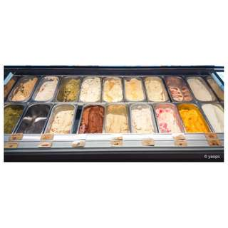 Ital Projet Gioia 18 Ice Cream Display Freezer