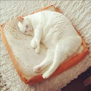 Pet Cushion cat bed bread pet bed sleep