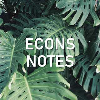 A Level Econs Notes (H1,H2)