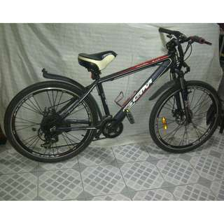 Mountain Bike