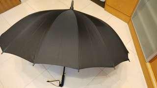 "40"" auto umbrella 16 ribs/骨双人自動傘"