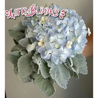 Beautiful Fresh Flower Surprise for Special One Bouquet V73 - CMARZ