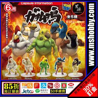 男魂 85折團購 預訂 6-7月 肌肉雞 戰鬥筋肉鳥 Set of 5 Medicom Toy Gachi Muchi Tori Capsule Gachic Bird Battle Muscle Figure Figure 玩具 模型 首辦