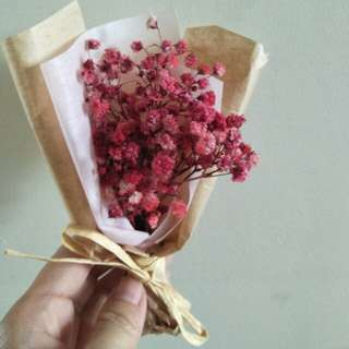 Dried baby breath and Pink Misty