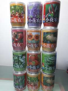 Miniature Fruit & Flowering Plants in a Can with seeds & soil all in. Just add water to get start