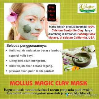 Mollus mask clay instock