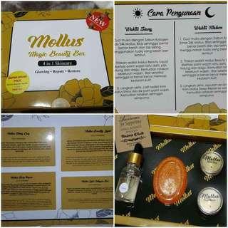 Mollus 4in1 MBB Box instock