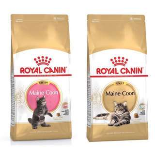Royal Canin Maine Coon Kitten & Adult Cat Dry Cat Food