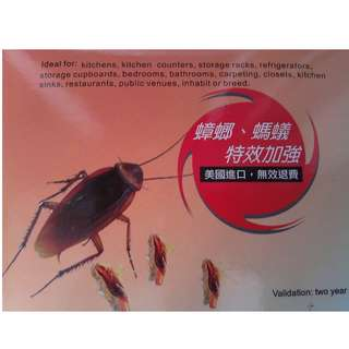 Boric acid lure - cockroaches repellent (Limoon)