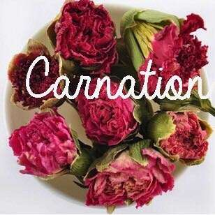 Dried Carnation tea organic