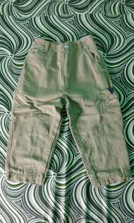 Auth guess pants