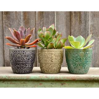 Botanical Lace Ceramic Plant Pot Planter