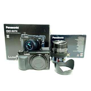 Panasonic Lumix GX7 with 12-35mm F2.8 lens
