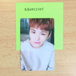 WTT SEVENTEEN TEEN AGE WHITE PC