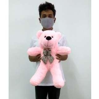 Teddy Bear 60cm Pink
