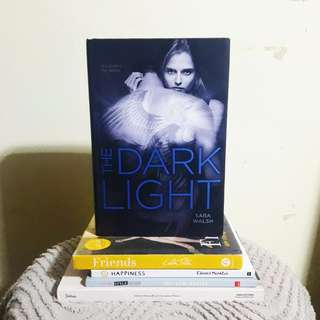 The Dark Light by Sara Walsh