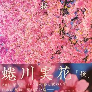 Mika Ninagawa photography book Sakura bought in Japan