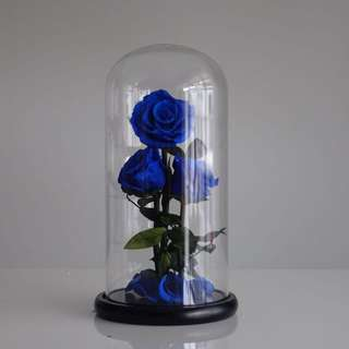 3-Piece Premium Preserved Ecuadorian Roses in Glass Dome