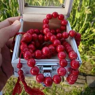 red coral/marjan (tasbih)