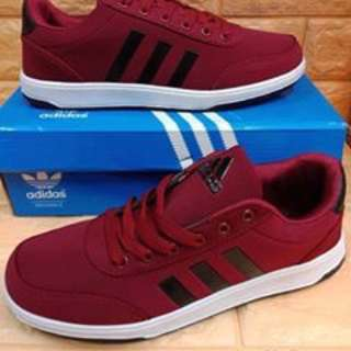 Adidas shoes size : 41-45