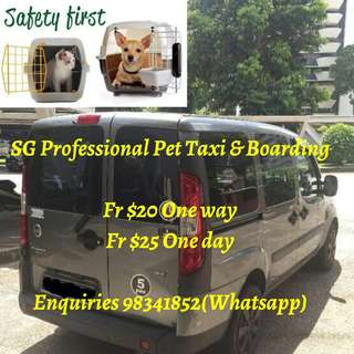 SG Professional Pet Taxi, Sitting & Boarding