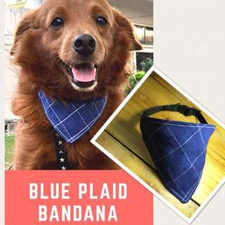 Dog Collar with Blue Plaid Bandana