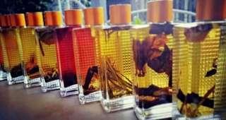 Premium Condition / Conjure Oils