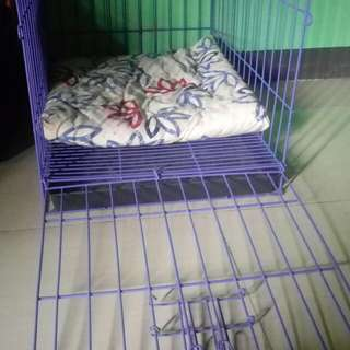 Purple dog cage for small to medium breed