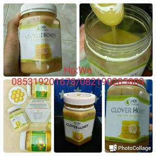 Madu Clover Honey