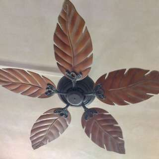 Acrylic ceiling fan