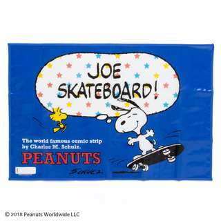 Japan Sanrio Snoopy Picnic Mat S (Skate)