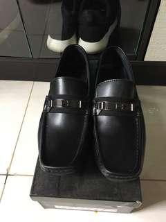 Pantofel hermes