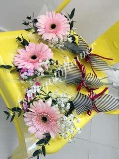 Daisy Flower Gerberas