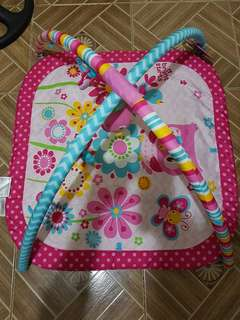 Baby Play Gym & Mat