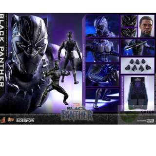 徵 hot toys black panther