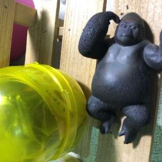 🚚 休眠動物園 黑猩猩 扭蛋 轉蛋
