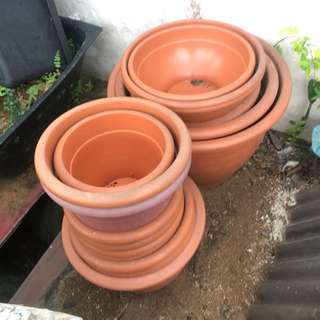 Flower pots small $1 big $8
