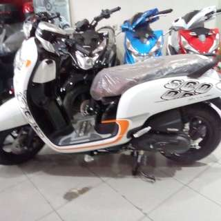 New scoopy